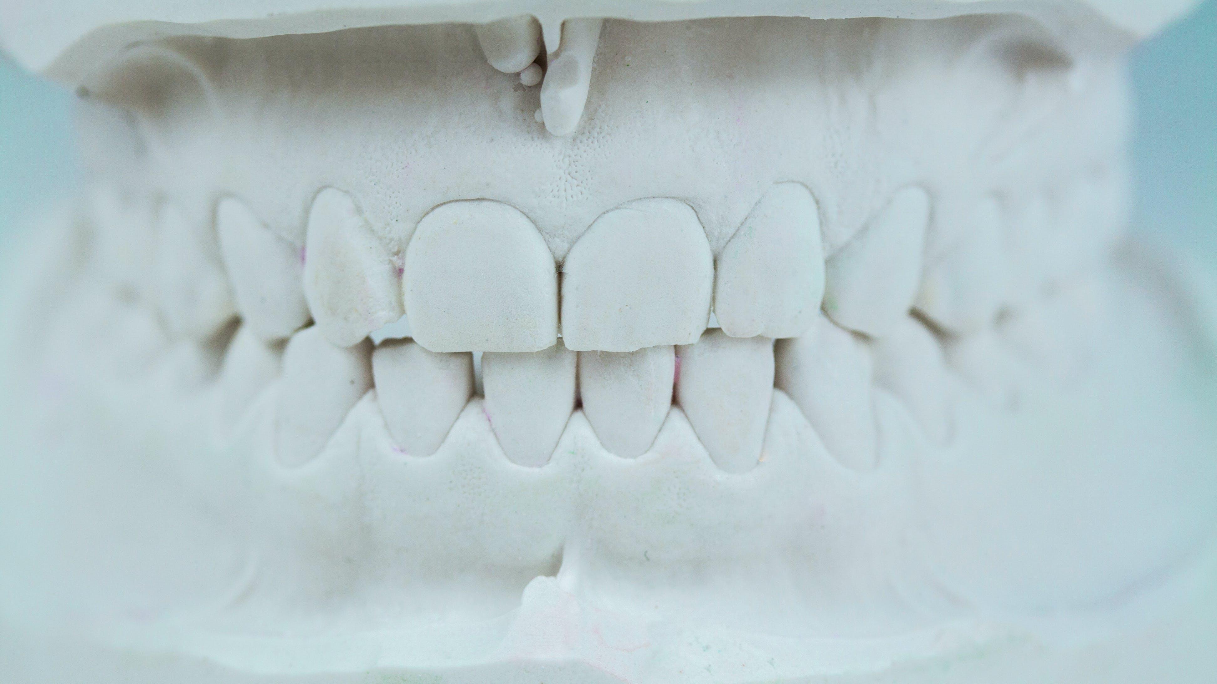 Zähne wachsen nach erfahrungen